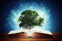 Translating the language of learning